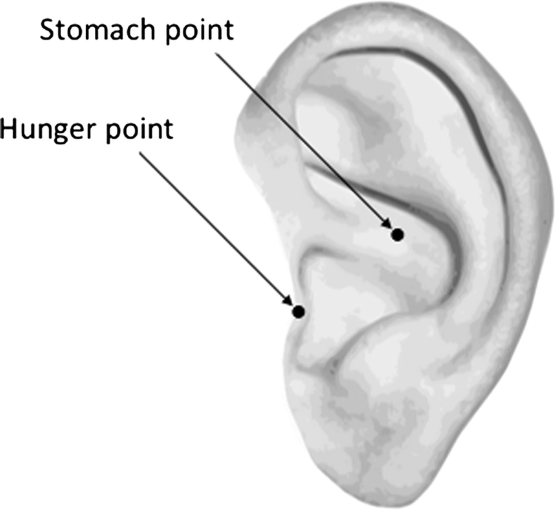 The effects of auricular acupuncture on weight reduction ...